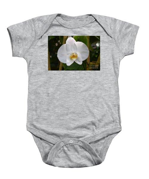 Phalaenopsis Sanderiana Baby Onesie