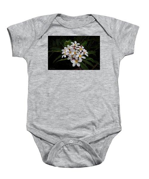 White Plumerias In Bloom Baby Onesie