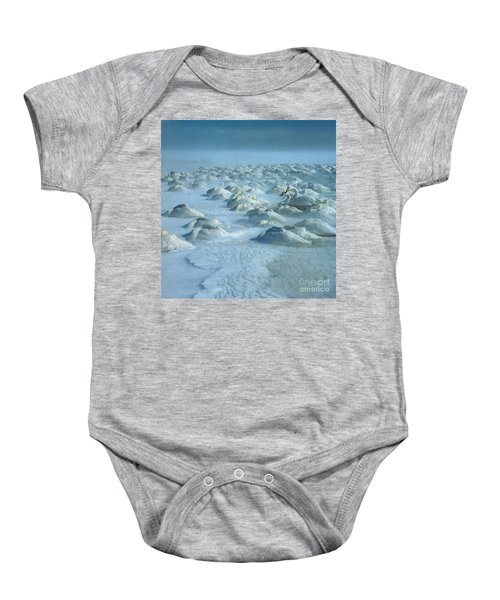 Whooper Swans In Snow Baby Onesie