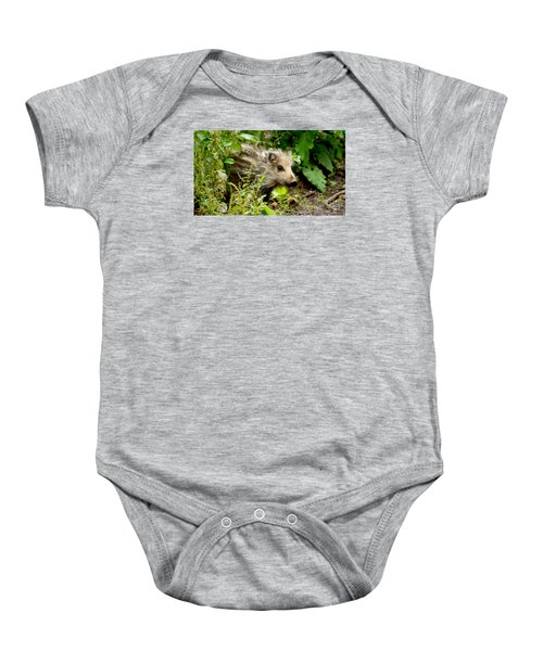 Wild Boar Baby Baby Onesie