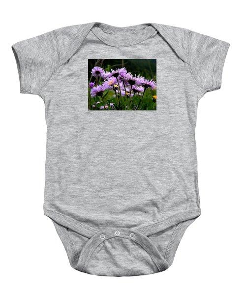 Wild Mountain Asters Baby Onesie