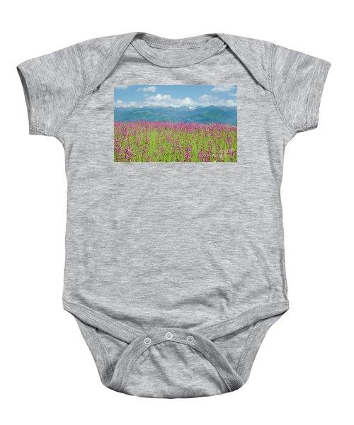 Wildflower Meadows And The Carpathian Mountains, Romania Baby Onesie
