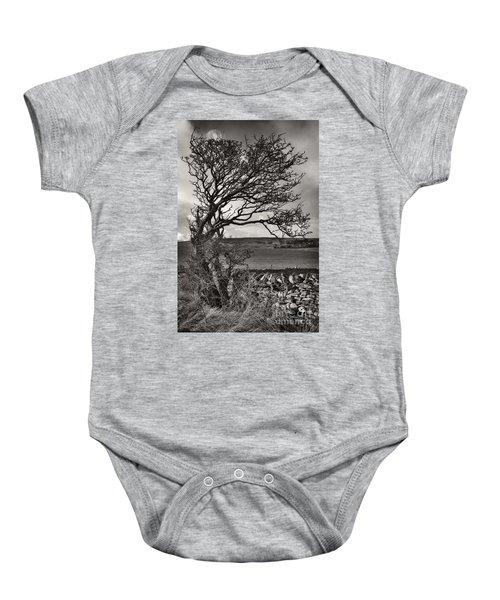 Windswept Tree In Winter Baby Onesie