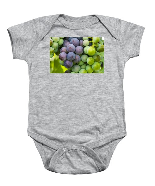 Wine Grapes Close Up Baby Onesie