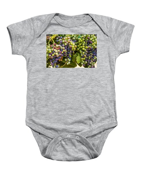 Wine Grapes On The Vine Baby Onesie