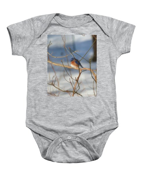 Winter Bluebird Art Baby Onesie