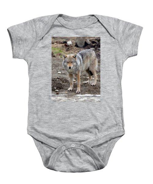 Wolf 2 Norway Baby Onesie