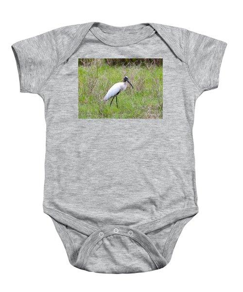 Wood Stork In The Marsh Baby Onesie by Carol Groenen