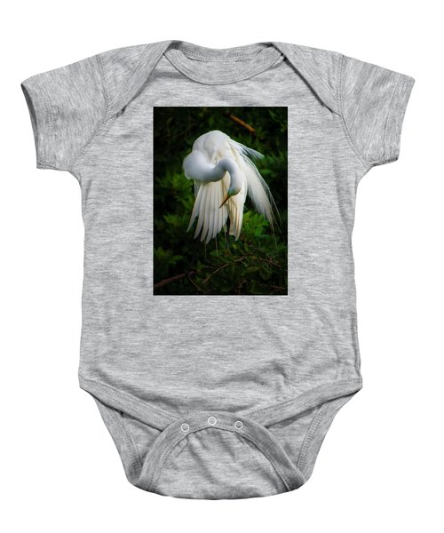 Breeding Plumage And Color Baby Onesie