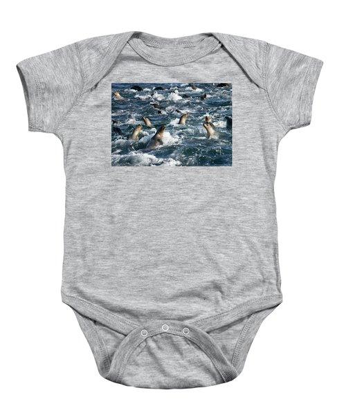 A Raft Of Sea Lions Baby Onesie
