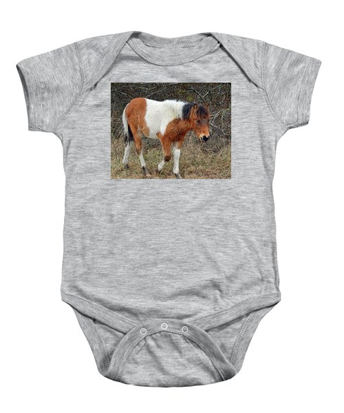 Autumn Glory N2bhs-ap On Assateague Island Baby Onesie