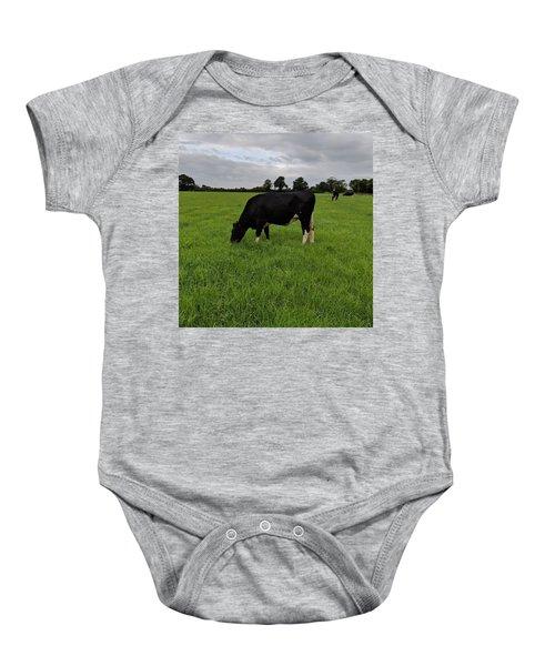 Beautiful Dairy Heifer Baby Onesie