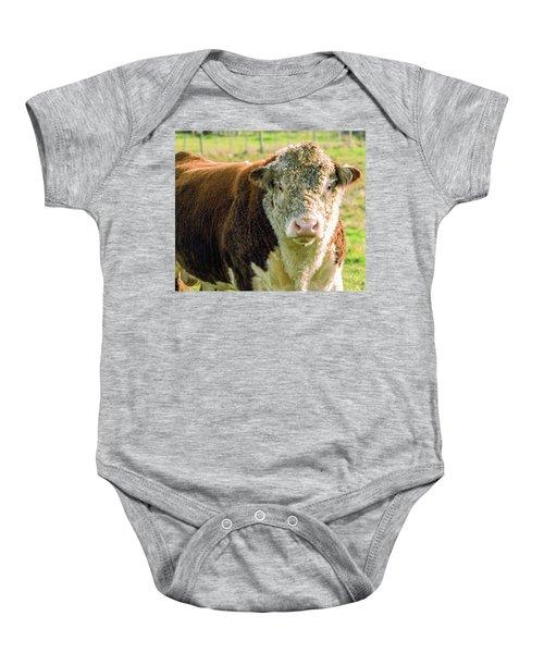 Bull In The Country Side Of Tasmania. Baby Onesie