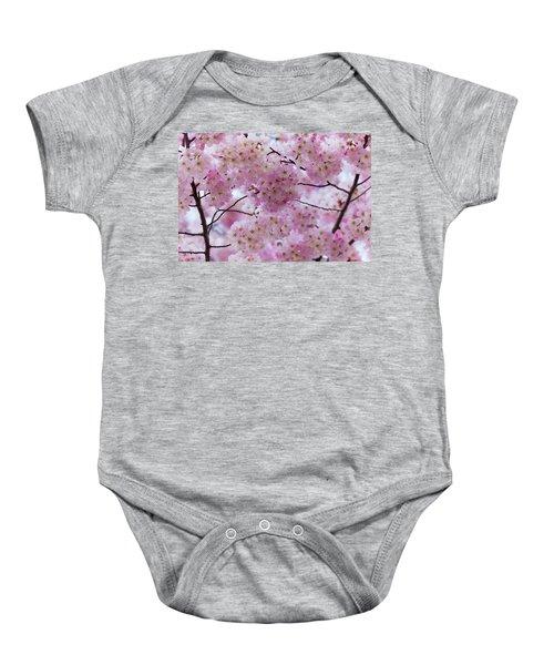 Cherry Blossoms 8625 Baby Onesie