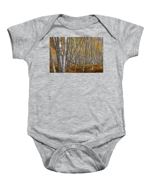 Baby Onesie featuring the photograph Colorful Stick Forest by James BO Insogna