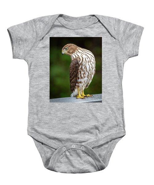 Cooper's Hawk Baby Onesie