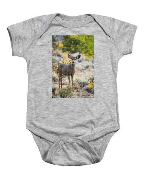 Baby Onesie featuring the photograph Deer by Vincent Bonafede