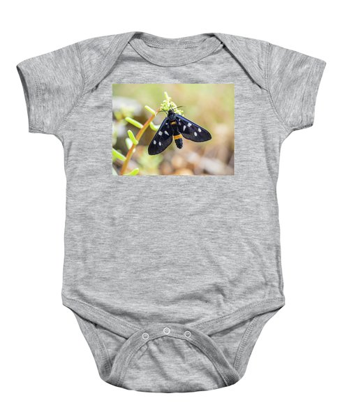 Fegea - Amata Phegea -black Insect With White Spots And Yellow Details Baby Onesie