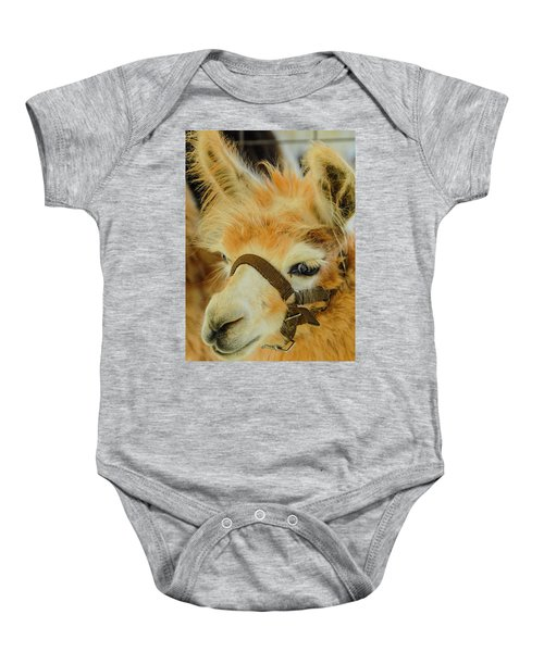 Happy Alpaca Baby Onesie