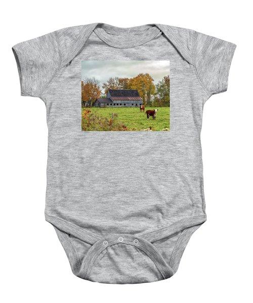 Herefords In Fall Baby Onesie