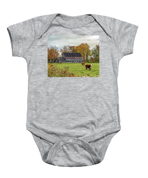 Herefords In Fall Baby Onesie