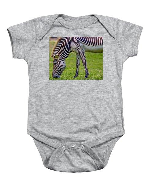 Love Zebras Baby Onesie