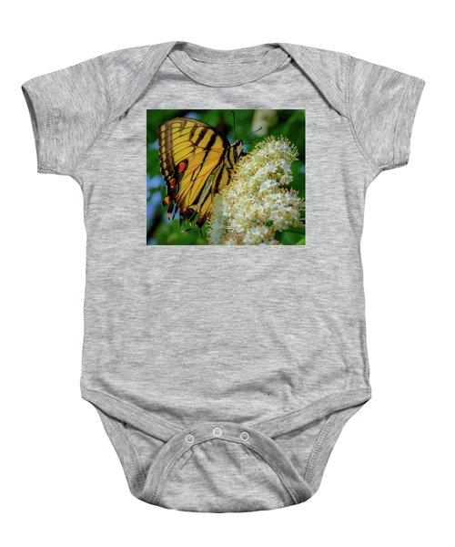 Manassas Butterfly Baby Onesie