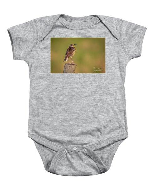 Meadowlark On Post Baby Onesie