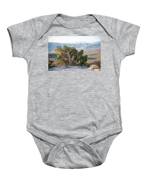 Mesquite In Nevada Desert Baby Onesie