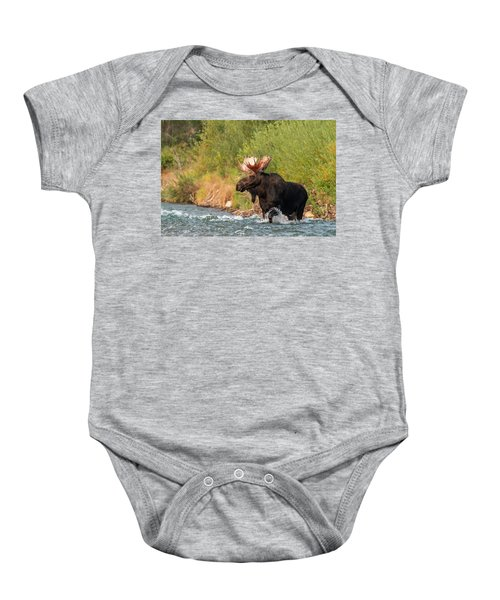 Baby Onesie featuring the photograph Moose Crossing by Mary Hone