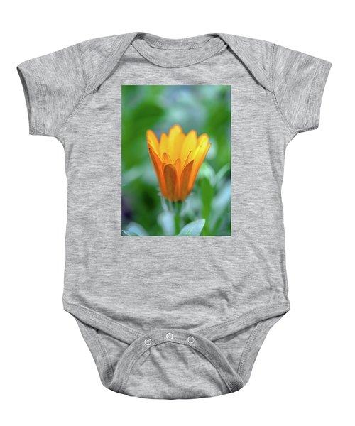 Orange Daisy Baby Onesie