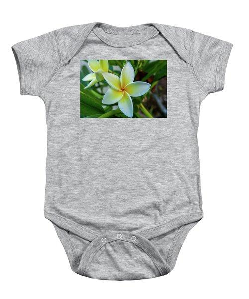 Plumeria In Bloom Baby Onesie