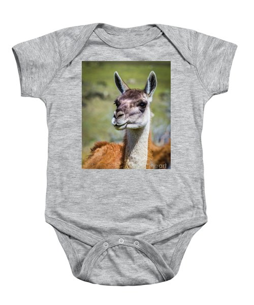 Portrait Of A Guanaco, Patagonia Baby Onesie