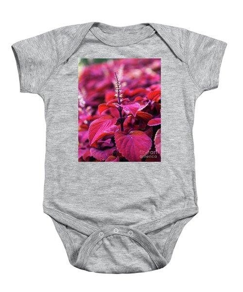 Reds Baby Onesie