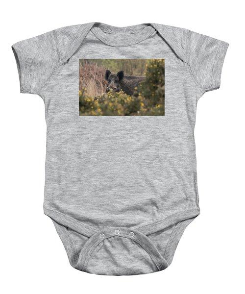 Wild Boar Sow Baby Onesie
