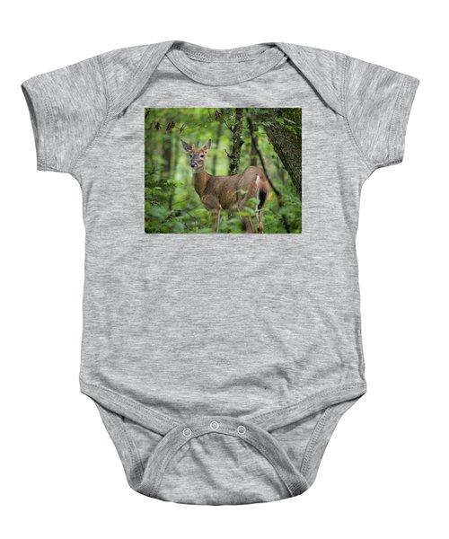 Young White-tailed Deer, Odocoileus Virginianus, With Velvet Antlers Baby Onesie