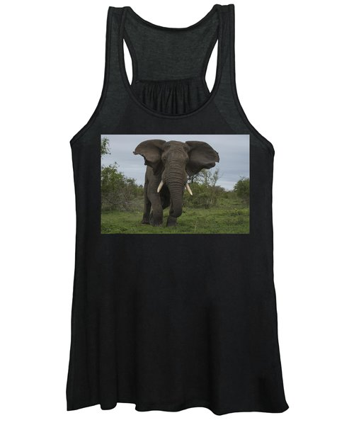 African Elephant Charging Sabi-sands Women's Tank Top