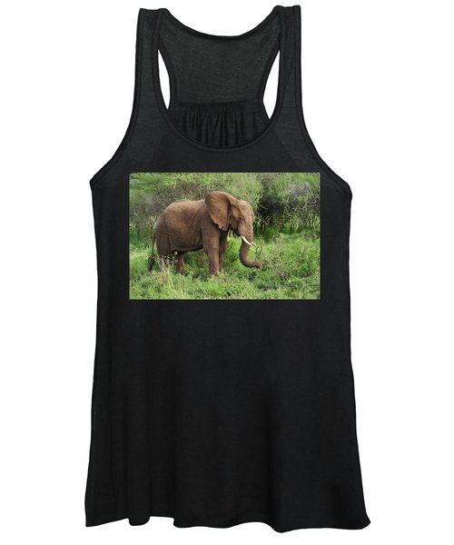 African Elephant Grazing Serengeti Women's Tank Top