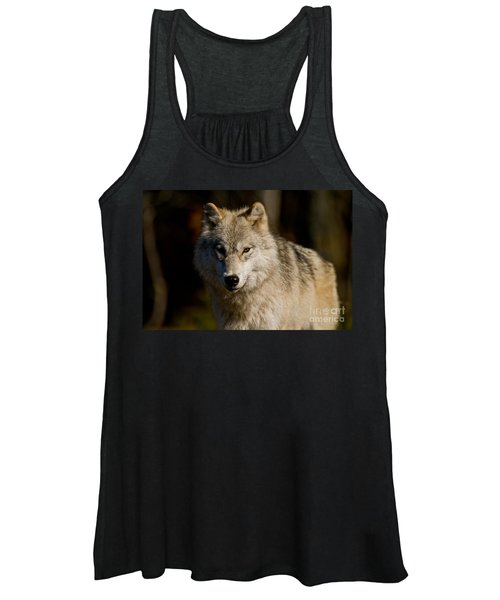 Arctic Wolf Pictures 247 Women's Tank Top