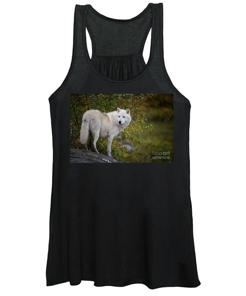 Arctic Wolf Pictures 922 Women's Tank Top