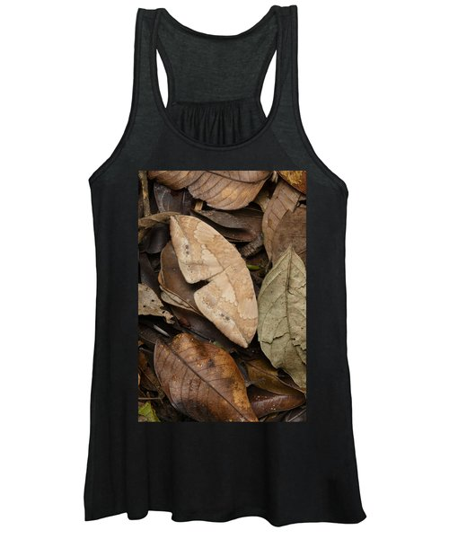 Moth Camouflaged Against Leaf Litter Women's Tank Top