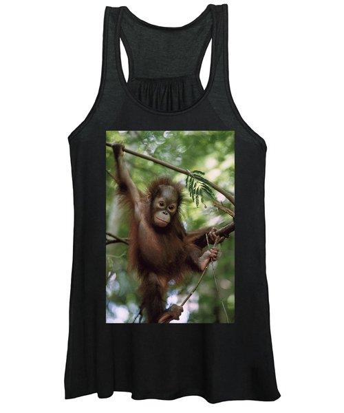 Orangutan Infant Hanging Borneo Women's Tank Top