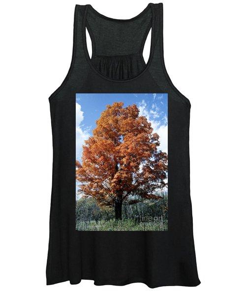 Sugar Maple In Autumn Women's Tank Top