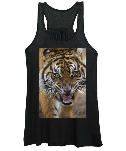 Sumatran Tiger Male Snarling Native Women's Tank Top