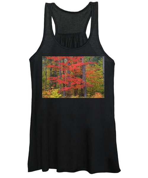 Trees In A Forest, Schoolcraft County Women's Tank Top