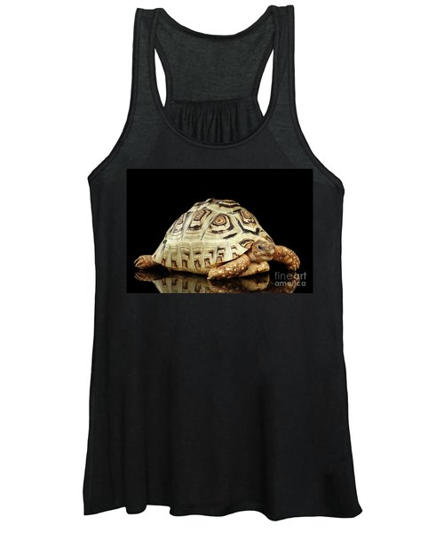 Closeup Leopard Tortoise Albino,stigmochelys Pardalis Turtle With White Shell On Isolated Black Back Women's Tank Top