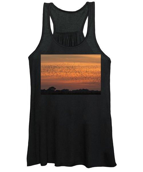Sunset Starlings  Women's Tank Top