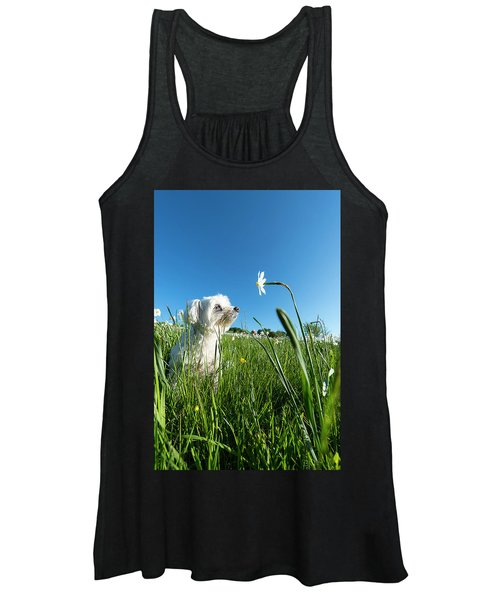 Blooming Daffodils In The Antola Park With Maltese IIi Women's Tank Top