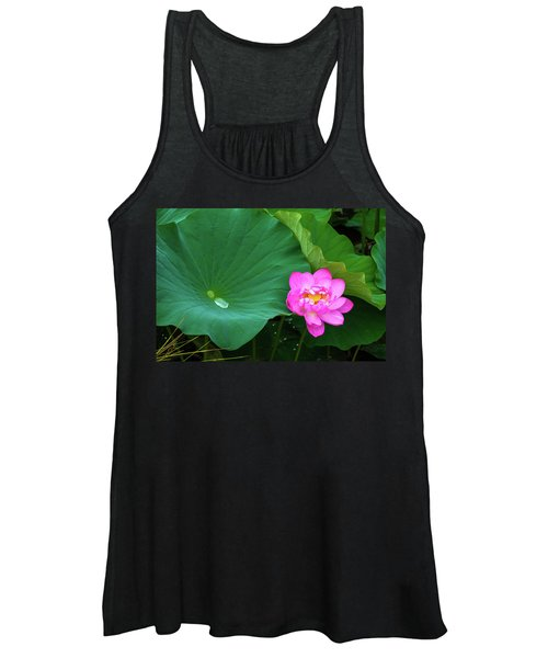 Blooming Pink And Yellow Lotus Lily Women's Tank Top