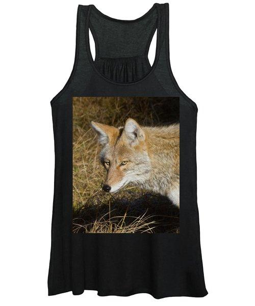 Coyote In The Wild Women's Tank Top